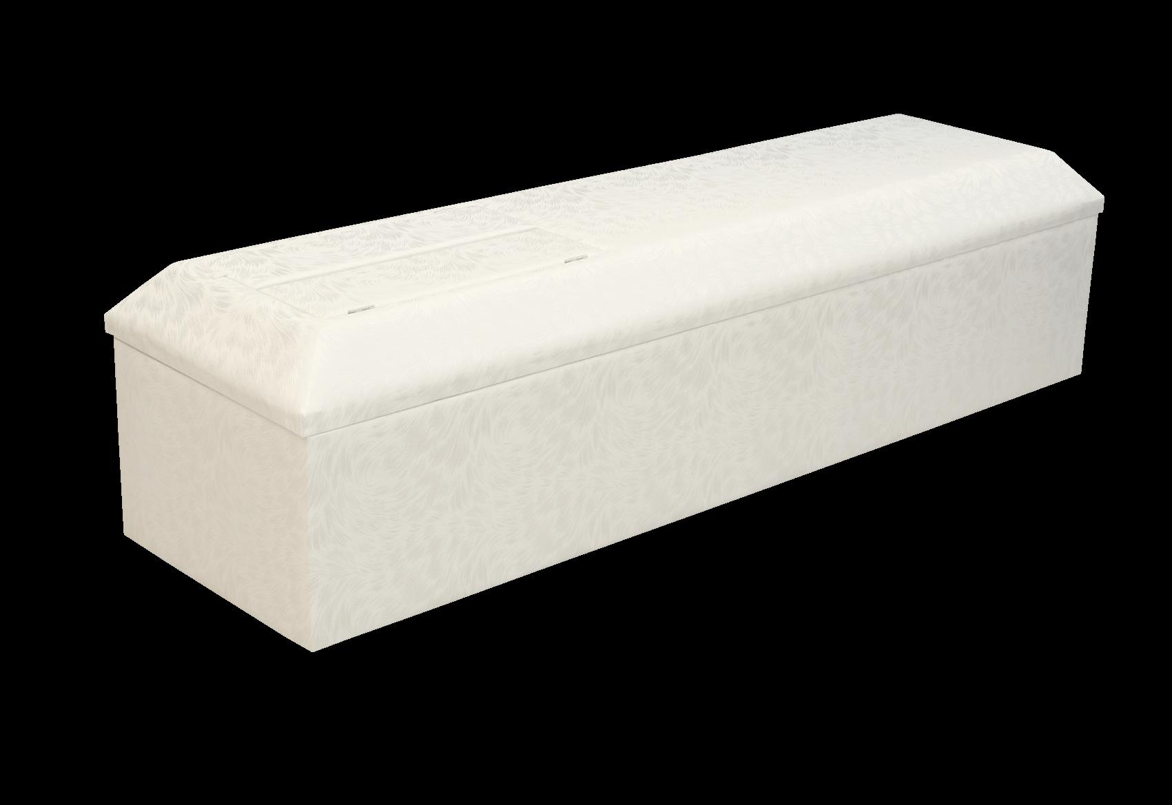 棺‐プレマ(クリーム)背景なし
