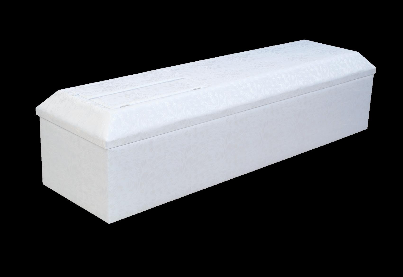 棺‐プレマ(ブルー)背景なし